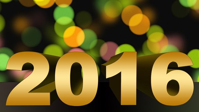 2015 in Review and Goals for 2016